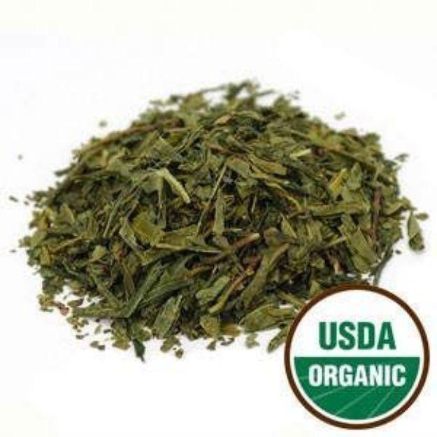 Bancha Tea (Japan) Organic