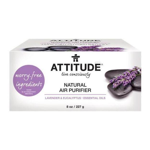 Natural Air Purifier - Lavender & Eucalyptus (27.1 fl. oz., Attitude)